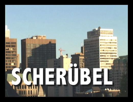 http://klausscheruebel.com/files/gimgs/27_scheruebelweb01.jpg